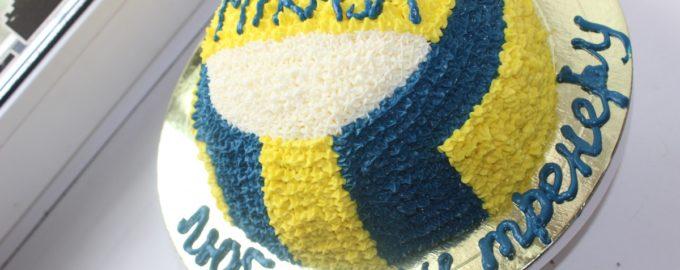 торт в виде волейбольного мяча